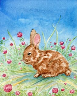 shelleyFreese_brownBunny_watercolor_72
